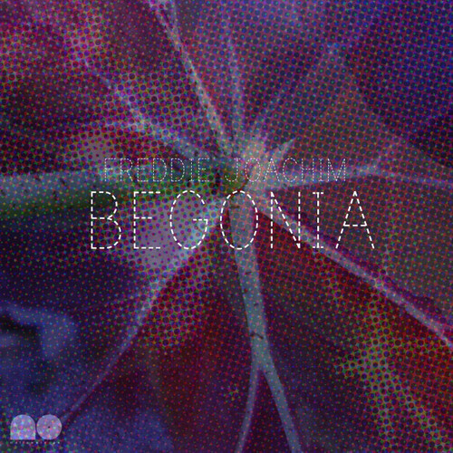 Freddie Joachim - Begonia