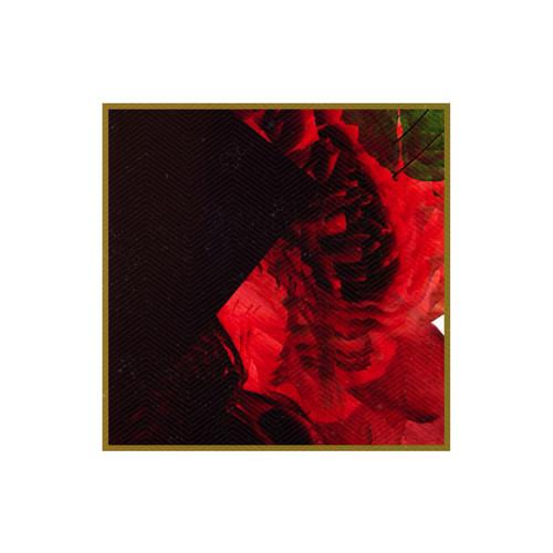 artworks-000081984269-8ggzvu-t500x500